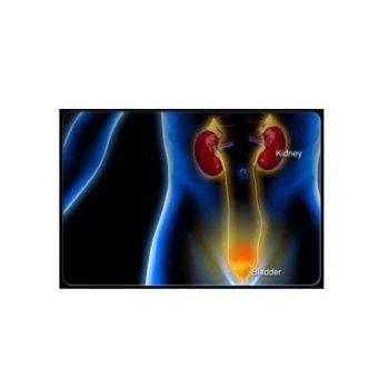 Baba Ramdev Medicine For Urine Infection