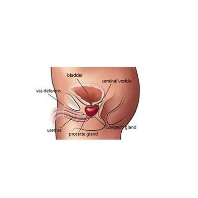 Prostate enlargement baba ramdev